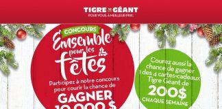Concours Ensemble Pour Les Fêtes de Tigre Géant