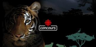 Concours Radio-Canada Partez à l'Aventure