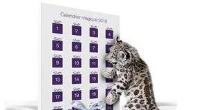 Concours Telus Calendrier Magique 2018