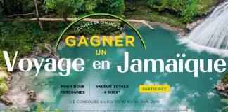 Concours La Vie En Rose Jamaïque