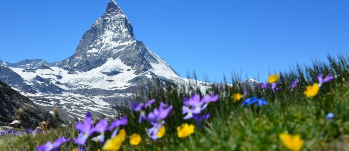 Concours A. Vogel Voyage En Suisse