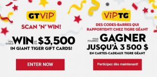 Concours VIP TG de Tigre Géant